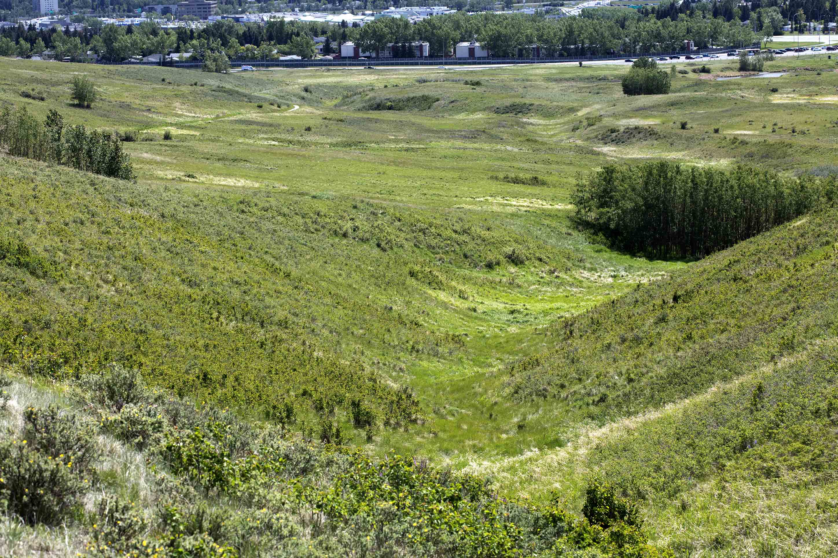 Nose-Hill-Ice-Age-Gullies